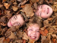 Faces in the leaves