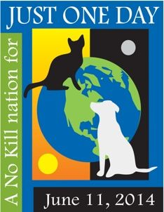 """We are asking animal shelters across the USA to take a pledge not to kill any savable animals on June 11, 2014. For Just One Day, """"Euthanasia Technicians"""" will put down their syringes & pick up cameras. Instead of injecting animals with lethal doses of sodium pentobarbital, they will photograph them & post them on the Internet, on Facebook, on twitter."""
