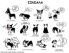 Boston Terriers are the BEST! (The puppy in the pictures reminds me of our Border Stack [Border Collie, Jack Russell, Bull Terrier mix], Woodie) I Love Dogs, Cute Dogs, Dog Body Language, Education Canine, Boston Terrier Love, Boston Terriers, Terrier Dogs, Dog Poster, Dog Behavior