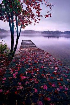 Lake Dock, Thousand Islands, Canadá por MyohoDane