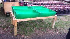 Barrel Garden Planters, Plastic Barrel Planter, Bucket Gardening, Container Gardening, 55 Gallon Plastic Drum, Raised Bed Garden Design, Home Vegetable Garden, Herb Garden, Growing Gardens