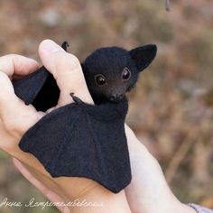 Baby Animals Getting Killed Videos. Baby Animals Joey as Pictures Of Baby Animals In The Wild Baby Animals Super Cute, Cute Little Animals, Cute Funny Animals, Cutest Animals, Cute Puppies, Cute Dogs, Cute Babies, Baby Animals Pictures, Cute Animal Pictures