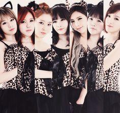 Photo of T-ara for fans of T-ARA (Tiara).