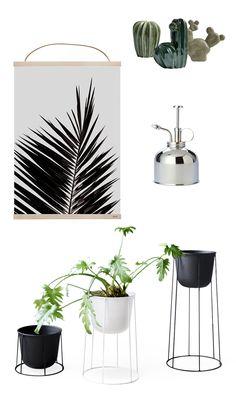 Botanic inspired interior