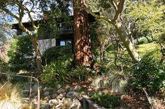 Berkeley Real Estate : 68 Tamalpais Road, Berkeley