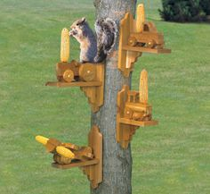 Squirrel Feeders Woodcraft Plans Are you tired of squirrels stealing all the birdfeed? Well, then give them their very own feeder! Squirrel Feeder Diy, Squirrel Home, Cute Squirrel, Squirrels, Garden Bird Feeders, Squirrel Pictures, Wood Craft Patterns, Bird House Plans, Wood Bird