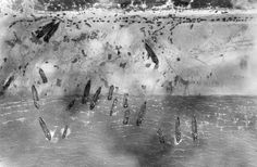 Newly released aerial photograph shows ships carrying allied troops at Sword beach on June 6, 1944 taken 1,000 feet above the French coastline by a Royal Air Force Mustang aircraft of II.