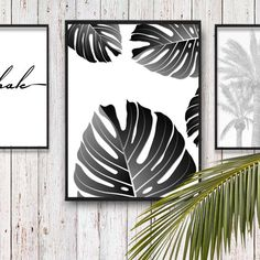 Monstera Leaf Print, Palm Leaves, Palm Tree Leaf Print, Tropical Print, Black and White Palm Leaf Poster, Tropical Leaf Art, Monstera Leaves by PrintsHomeDecor on Etsy