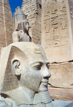 1998 312 Luxor Ramses II kop- | Head of Ramesses II, Luxor Temple, Egypt.