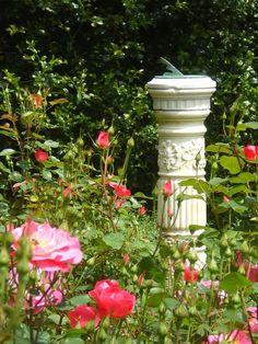 Sundial in a rose garden