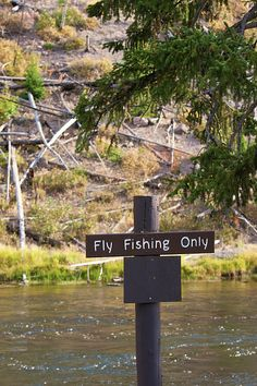 "Posted sign along a riverbank (Firehole River) in Yellowstone National Park indicating only ""fly fishing"" is allowed. Judging by all the fly fisherman in the park, I'm guessing most folks have no problem with this."