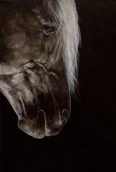 2016/08/27 Horse - Tony-O-Connor
