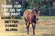 When you let go of the past something better comes along. #horses #horse