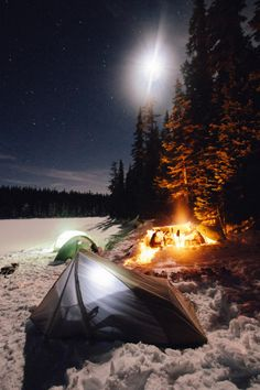 The beauty of winter camping. Thanks to fieldguidetobirds.