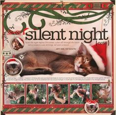 Image result for scrapbook ideas christmas pets