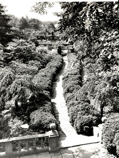 Coe Hall, Planting Fields, Oyster Bay, New York: gardens, circa 1961 (first campus of Stony Brook University) (credit: University Archives, Stony Brook University).