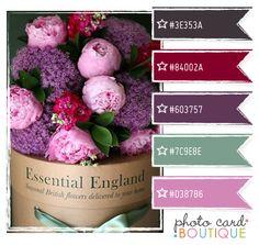Color Crush Palette · 8.14.2011 - Photo Card Boutique, LLC
