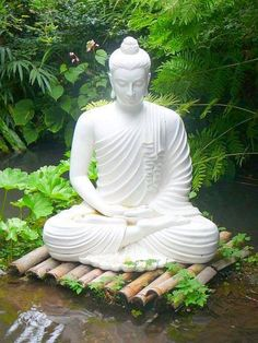 Be Gentle First With Yourself If You Wish To Be Gentle With Others Buddha Statuesbuddha
