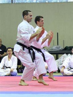#Seiiunchin #Kata #Karate #Neko #Goju #GojuRyu