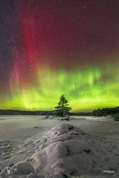 ~~The Artistry | aurora borealis, Norway | by Ole Henrik Skjelstad~~