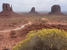 Monument Valley, USA.  One of the world's most magical places.