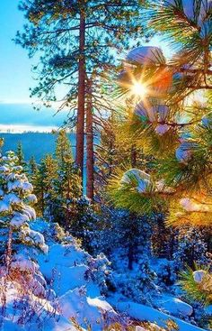 Might through the Mountains Beautiful World, Beautiful Images, Landscape Photography, Nature Photography, Winter Scenery, Winter Beauty, Winter Wonder, Winter Landscape, Nature Pictures