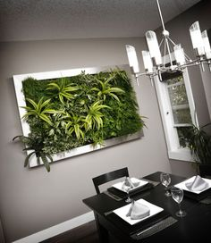 Nature's Art Living Walls | Contact Us, Indoor Vertical Wall Garden Systems