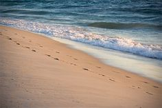 Our memories of the ocean will linger on, long after our footprints in the sand are gone<3