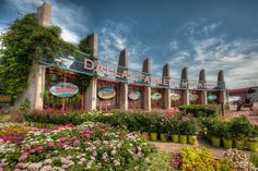 Dallas Farmers Market Dallas, S Pearl Expy, Dallas… Dallas, Texas Texans, Texas Pride, Great Places, Places To See, Dallas Farmers Market, Texas Photography, Grand Prairie, Bon Voyage
