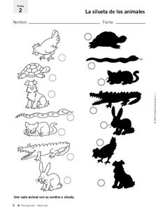 Printable worksheets for kids Match the drawings with their shadows 2 Grade R Worksheets, Nursery Worksheets, Kindergarten Math Worksheets, Tracing Worksheets, School Worksheets, Printable Worksheets, Printables, Printable Activities For Kids, Learning Activities