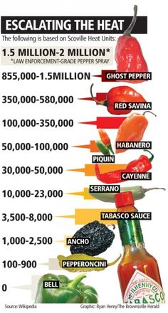 In the realm of the extreme, the ghost pepper reigns supreme — at least it did, according to the Guinness Book of World Records, from February 2007 to March Allo Pizza, Chile Picante, Types Of Peppers, Growing Peppers, Hot Sauce Recipes, Eating For Weightloss, Ghost Peppers, Canning Recipes, Stuffed Hot Peppers