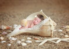 Sea shell digital background newborn baby by Sashasdigitaldrops Newborn Photography Props, Newborn Session, Newborn Photos, Baby Boy, Baby Girl Newborn, Summer Baby Photos, Foto Baby, Breastfeeding And Pumping, Digital Backdrops