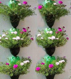 Bottle garden - 36 Great DIY Ideas for Original Garden Pots – Bottle garden Garden Crafts, Diy Garden Decor, Garden Projects, Wood Projects, Diy Crafts, Herb Garden, Garden Pots, Jardim Vertical Diy, Different Kinds Of Flowers