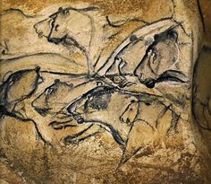 Cave Paintings of Chauvet - lions In a dark cave, using oil lamps, the images appear to move as the light plays over them. They are not seen all at once, as in this photo, but revealed slowly by the lamp.