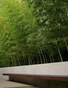isometrics:  // Landscape design Larchmont By Hocker Design Group Photos courtesy of Hocker Design Group