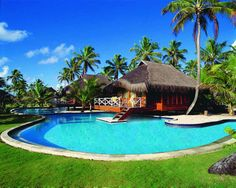 Stunning Experience in Exotic Escape : Green Courtyard Curve Shaped Swimming Pool Coconut Trees Thatched Roof Cottage