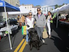 Big Beautiful Black Dog with proud owners.