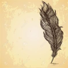 Sketch Of The Feather On Grungy Texture Royalty Free Cliparts ...