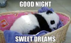 """Good Night Quotes and Good Night Images Good night blessings """"Good night, good night! Parting is such sweet sorrow, that I shall say good night till it is tomorrow."""" Amazing Good Night Love Quotes & Sayings Good Night Meme, Funny Good Night Quotes, Good Morning Meme, Lovely Good Night, Good Night Friends, Good Night Messages, Good Night Wishes, Good Night Sweet Dreams, Good Morning Good Night"""