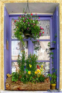 Purple and lace, a log, flowers and a tiny gnome in a window in Village Moustiers Sainte Marie - Vaucluse | by nardounette