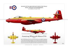 Armstrong Whitworth Meteor D16 aviationgraphic.com Illustration Military Jets, Military Aircraft, Gloster Meteor, Airplane Design, Nose Art, Royal Air Force, Aviation Art, Royal Navy, Fighter Jets