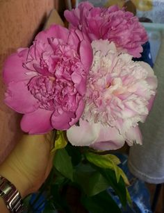 #Colour #happiness #beauty #peonies