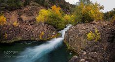 Desert Oasis by DaniloFaria. Please Like http://fb.me/go4photos and Follow @go4fotos Thank You. :-)