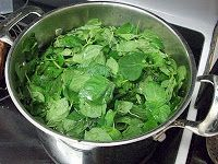 Homestead Roots: Canning Herb Syrup - Mint, Spearmint, Chocolate Mint, Lavendar, Basil