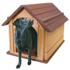 @Overstock.com - Pet Zone Comfy Cabin Large Dog House - This comfy cabin dog house by Pet Zone is an excellent choice for your outdoor pet. The weather-resistant and insulated design make it so your dog never gets stuck out in the rain, and the inside has a plastic surface that is always easy to clean.  http://www.overstock.com/Pet-Supplies/Pet-Zone-Comfy-Cabin-Large-Dog-House/5757236/product.html?CID=214117 $166.99