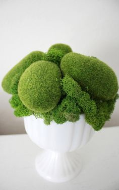 Preserved flowers and other unusual organic elements like seed pods, grasses, ferns and moss, can be super creative additions to the floral arrangements at ...