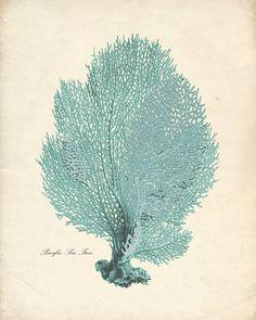 Vintage Sea Coral Print