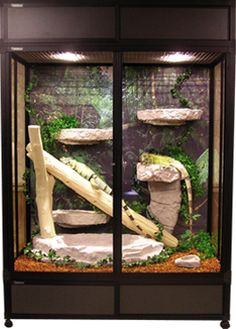 Reptile Cage x x Reptile Cage x x iguana cage Reptile Cage, Reptile Habitat, Reptile House, Reptile Room, Iguana Care, Iguana Pet, Bearded Dragon Terrarium, Bearded Dragon Cage, Chameleon Enclosure