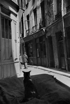 Henri Cartier-Bresson FRANCE. Paris. 1952 I like the way your eyes are drawn to the lighter part of the image and then you notice the cat