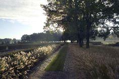 #landelijke #tuin in Uden. Strakke lijnen gecombineerd met weelderige beplanting. Stroken #siergras wisselen af met looppaden en graspaden. Puurgroen
